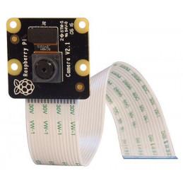Raspberry Pi kamera HD NoIR v2